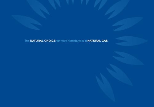 Peoples Gas Sales Kit